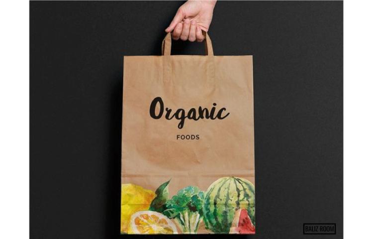 blog-baliz-room-logo-organic2.jpg