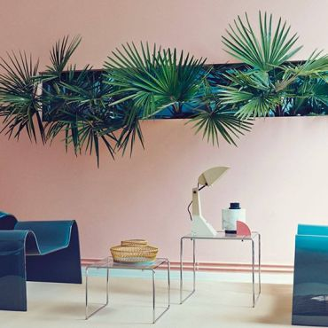 pareti-colori-tropical-balizroom