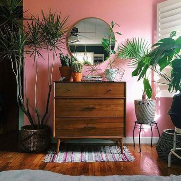 pareti-tinte-tropical-rosa-balizroom