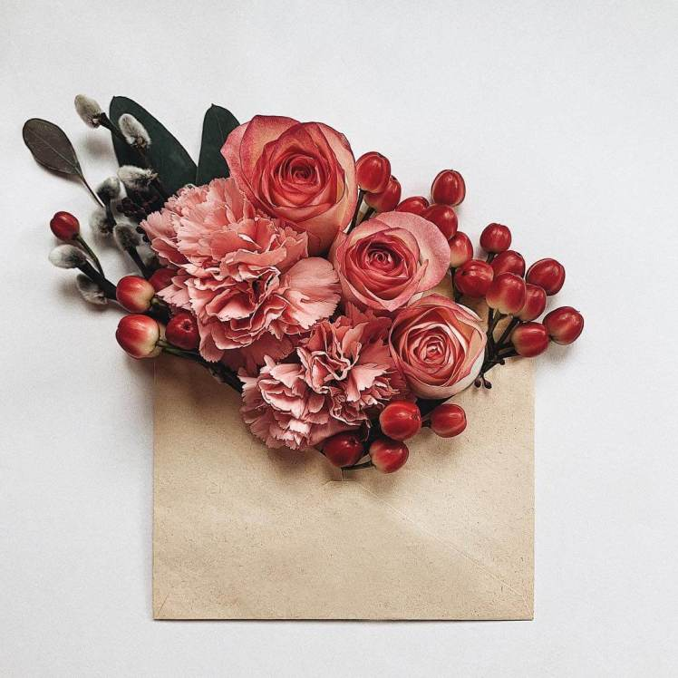 anna-remarchuk-envelope-series-balizroom-flowers-primavera-roses