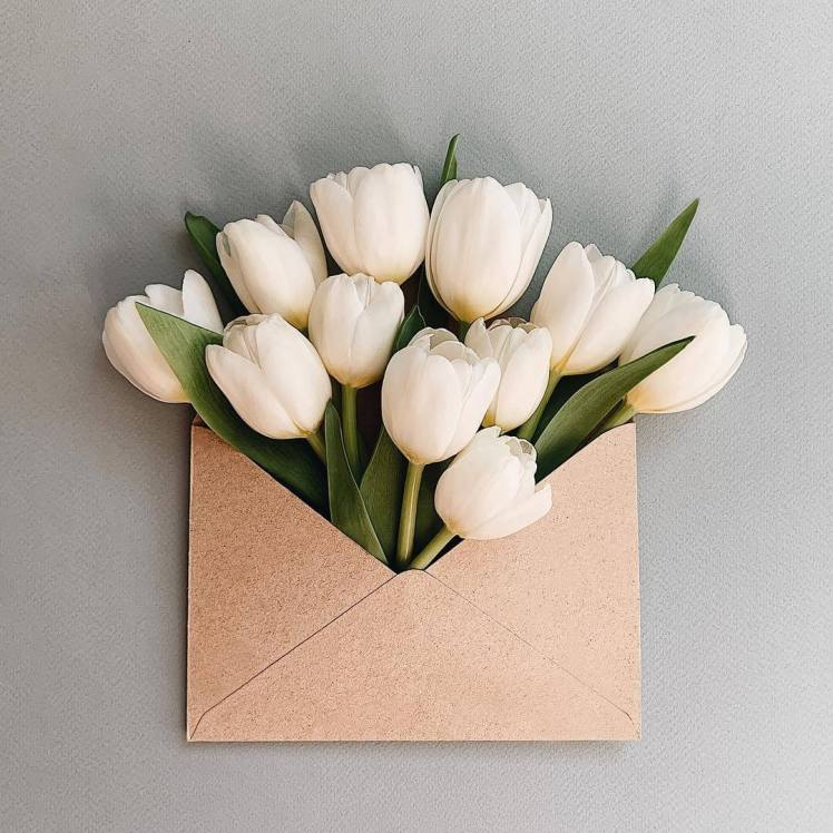 anna-remarchuk-envelope-series-balizroom-flowers-primavera-tulipani